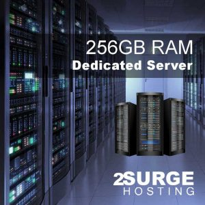 Services - 256GB Dedicated Server Hosting