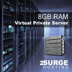 Services - 8GB RAM VPS Hosting